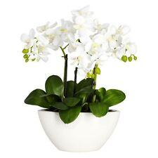 Phalaenopsis Silk Flower Arrangement, White