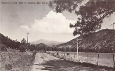 Vintage Postcard; Ruidoso Canyon West of Roswell NM Chaves County Unposted