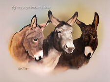 Signed Donkey Print by Robert May