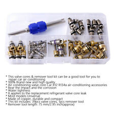40PCS Car Air Conditioning Valve Cores Remover Repair Tool R12 R134A A/C Kit