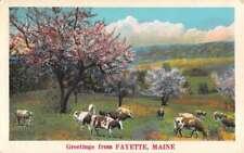 Fayette Maine Cow Pasture Greeting Antique Postcard K72625