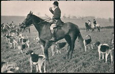 FOX HUNT Horses & Hounds Beagle Dog Vintage B&W Postcard Early Old Sports PC