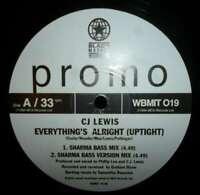 """CJ Lewis - Everything's Alright (Uptight) / Human 12"""" Vinyl Schallplatte - 65009"""