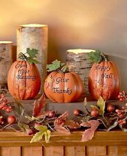 Set Of 3 Harvest Pumpkins With Fall Thanksgiving Phrases Table Home Decor