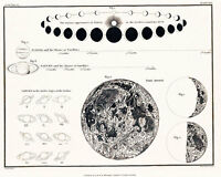 Astronomy Celestial Atlas Jamieson 1822 Plate-30 Art Paper or Canvas Print