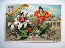 "Vintage Victorian Trade Card ""Liebig's Fleisch-Extract"" w/ Pretty Flower People*"