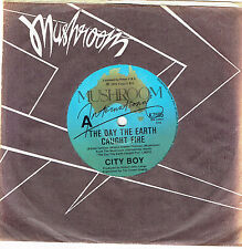"""CITY BOY - TH DAY THE EARTH CAUGHT FIRE - 7"""" 45 VINYL RECORD - 1979"""