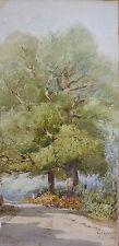 Paysage arbre aquarelle de Émile Dominique ROUX (1822-1915) daté 1873