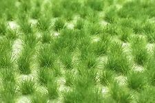 Miniature Model Self Adhesive Static Tufts Wild Spring Grass 6mm Natural Pack