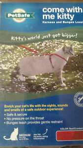 PetSafe Medium Cat Harness Bungee Leash come with me kitty