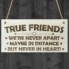 True Friends Never Apart Cute Wooden Hanging Plaque Gift Best Friends Love Sign
