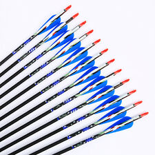 6pcs,31inch, Blue Carbon arrows Spine 500,Plastic Feather Target Practice
