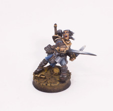 Painted Miniature Valeros Iconic Fighter Fantasy Pathfinder rpg DND