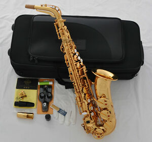 Professional Taishan 5000 Alto Sax Eb saxophone Gold High F# Germany Mouthpiece