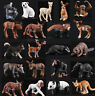Realistic Wildlife Animals Action Figures Model Educational Kids Toy Gift