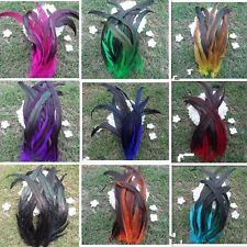 50 X Rooster Tail Feathers Gradient for Clothing Fascinator Hat Costume 25-35cm