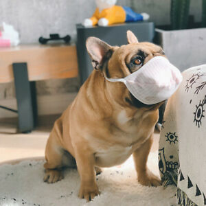 3x Cotton Muzzle for Short Nosed Breed Dog French Bulldog Boxer Boston Flat Nose