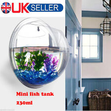 Acrylic Wall Mount Hanging Fish Bowl Aquarium Tank Beta Goldfish Plant Decor UK