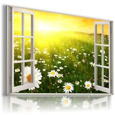 SUNRISE WHITE OXEYE DAISY 3D Window View Canvas Wall Art Picture W590 MATAGA
