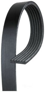 Serpentine Belt fits 2000-2001 Workhorse Custo P42  GATES
