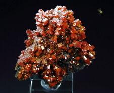 QUEBUL FINE MINERALS - VANADINITE, CALCITE - Pure Potential Mine, Arizona, USA