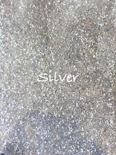 10g Silver Glitter Dust. Bath Bombs. Soap. Cosmetics. Nails. Crafts.