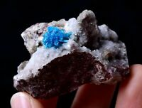 India /Rare Beauty CAVANSITE & ZEOLITE Crystal Symbiotic Mineral Specimen 43.55g