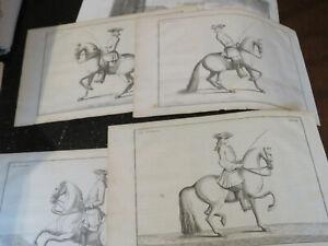 Horse, Dressage, published France ca: 1727 copper plates engraving 5 plates