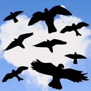 8x Vogel Aufkleber Vogelschutzaufkleber, Fensteraufkleber, Vogelschutz Mix1