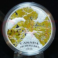 COA #500 - 2014 Canadian Maple Canopy #4 Autumn Allure $20 1 oz Pure Silver Coin
