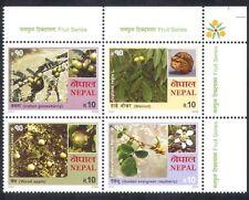 Nepal 2005 Apple/Raspberry/Walnut/Fruit/Flowers/Plants/Nature 4v blk (n38814)