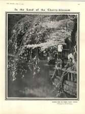 1909 LA PRIMAVERA NEL PARCO SHIBA Tokyo RUSSO PELLEGRINI fiume Giordano
