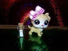 Littlest Pet Shop LPS Original Christmas Gift New #83 Ginny Junebug w/ Bonus