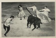 Mexico, Reynosa, unexpected bullfight Vintage  Tirage argentique  15x20  C