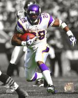 Adrian Peterson Minnesota Vikings Photo Picture Print #1252