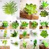 Artificielle Plante grasse Mini Succulents Cactus Vert Bureau Home Jardin Décor