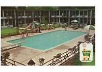 Holiday Inn Nashville TN Pool Scene Postcard Diving Board Jackknife Dive 1960's