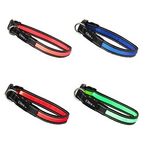 LED Dog Collar USB Rechargeable Flashing Safety Light Adjustable Pet S M or L