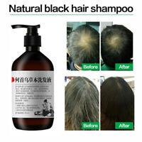 Natural Polygonum Anti Hair Loss Shampoo 300 ml./ 10 fl. Hair Growth Treatment