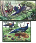 China Taiwan 2014 year Swinhoe Bird Conservation stamps+sheetlet 藍腹鷴