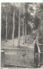South America Postcard - Paineiras - Represa Das Aguas - Rio De Janeiro  A9540
