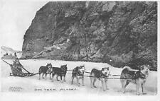 Alaska Dog Team P.E. Kern Skagway Valdez Postcard (c. 1910)