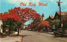 Key West Florida~Flame Royal Poinciana Trees~Light House~1950s Car~1956 PC