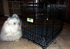 """Top Paw Black Metal 24"""" Two Door Folding Dog Crate with Bailey & Bella Pad"""