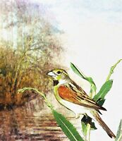 """perfect 24x36 oil painting handpainted on canvas """"bird,tree,landscape"""" NO1507"""