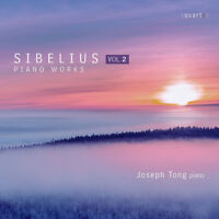 Jean Sibelius : Sibelius: Piano Works - Volume 2 CD (2017) ***NEW*** Great Value