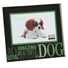 Awesome Cat Best of Breed Photo Frame Freestanding 6 X 4 Inch