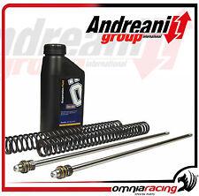 Kit Modifica Idraulico Forcella Andreani Group Cartridge Suzuki RGV 250 1991>