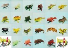 DeAgostini Iguanas & Co Leguane aussuchen aus allen 22 Figuren Eidechsen