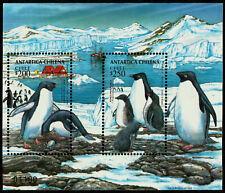 CHILE, ANTARCTICA, ADELIE PENGUIN, SOUVENIR SHEET, 1993, MNH